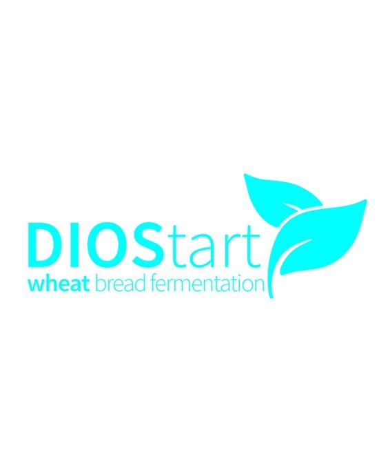 Diostartwheatbreadfermentation